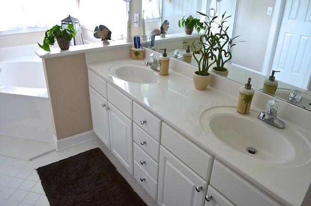 100 Delafield Cary Home master bath