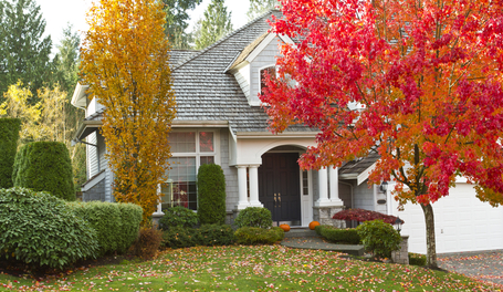 Shot of urban modern home during fall season